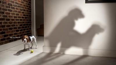 National Geographic, Dog Whisperer - Parents