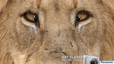 Panasonic Lumix - Lion