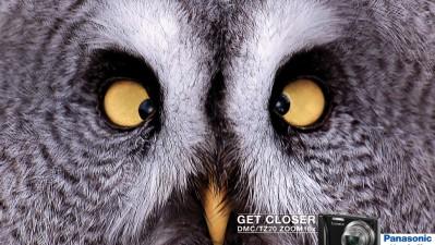 Panasonic Lumix - Owl
