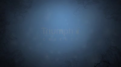 Triumph Essence - Helena Christensen for The Luxury Collection