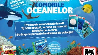 Mega Image - Comorile oceanelor