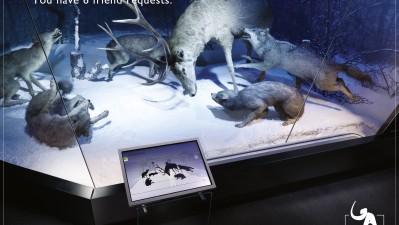 Muzeul National Grigore Antipa - Lupul