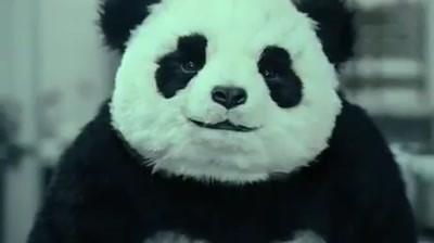 Panda Cheese - Never say no to a panda