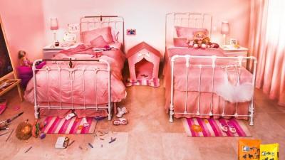 Alican Dog Food - Family treat, Room