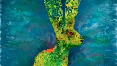 Avanti! Chamber Orchestra - Respect your ears, Rabbit