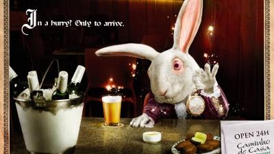 Bar & Restaurant Caminho de Casa 24h - White Rabbit, Alice