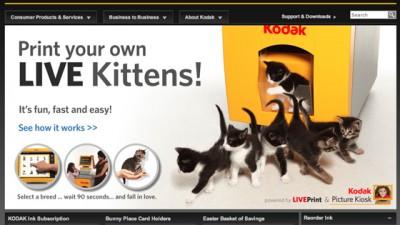 Kodak - Print your own live kittens
