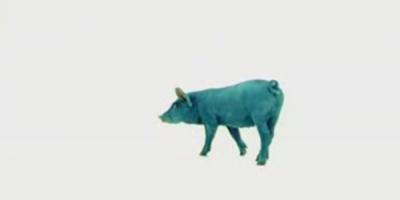 """La 100 de ani de existenta a brand-ului, Antrefrig relanseaza campania """"Porcul Albastru"""""""