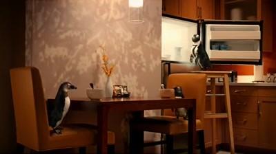 Residence Inn - Penguins