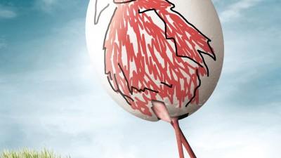 Zoo Cologne - Happy Easter Eggs, Flamingo