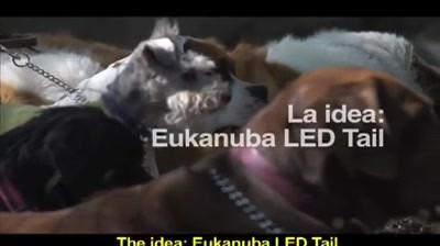 Eukanuba - Tail Advertising