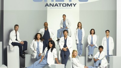 Grey's Anatomy - The team, 1