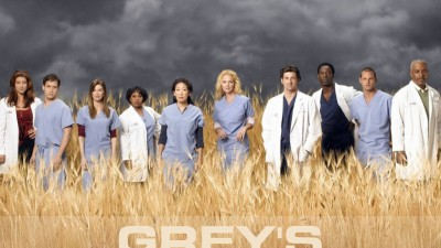 Grey's Anatomy - The team, 2