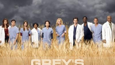 Grey's Anatomy - The team, 2