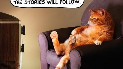 HKAAC Pet Adoption Service - Cat