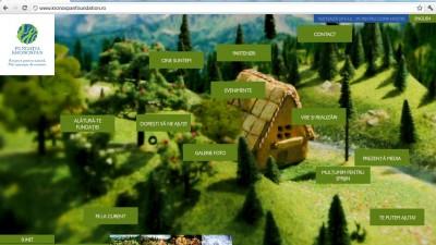 Website: kronospanfoundation.ro - Primavara