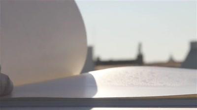 Case Study: Austria Solar - Solar Annual Report