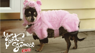 Eno anti-acid - Pig