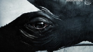 Sea Shepherd Conservation Society - Tears, Whale