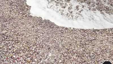 Corona Extra - Beach Dump