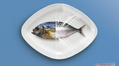 Ziploc Cling Wrap - Fish