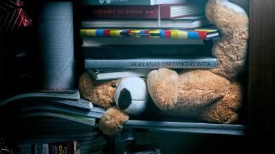 City Self Storage - Teddy Bear