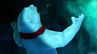 Coca-Cola - Polar Bears watching Super Bowl: Arghh