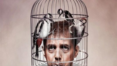 Ibuprom - Woodpeckers
