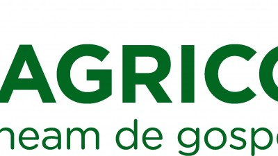 Agricola - Branding Corporate