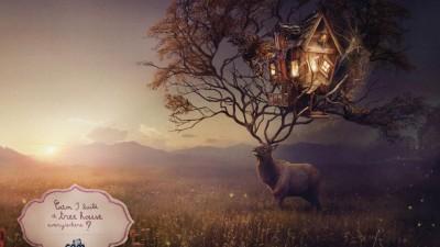 Cam - The Child's world, Deer