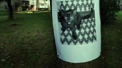 GreenNight - Revengeful neighbours, Cat