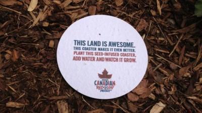 Molson Canadian - Seed Coaster