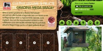 """Aplicatia """"Gradina Mega Image"""" testeaza abilitatile de gospodar ale utilizatorilor"""