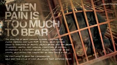 ACRES - Bear pile, 1