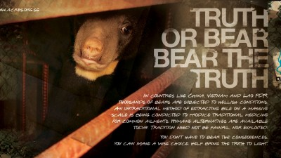 ACRES - Bear pile, 3