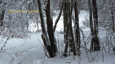 Al Flaherty's - Winter