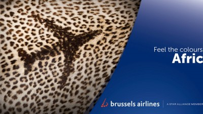 Brussels Airlines - Feel the colours of Africa, Leopard
