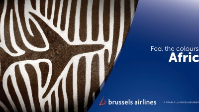 Brussels Airlines - Feel the colours of Africa, Zebra