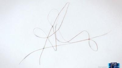 Fermofive - Curly Signature