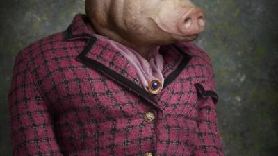 Karlstad Energy - Pig, 2