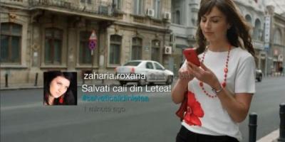 Oana Pellea – noua voce din campania Vodafone ce sustine comunitatea celor implicati in salvarea cailor salbatici de la Letea