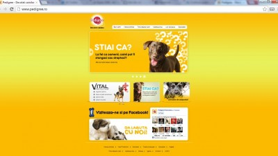 Website: pedigree.ro - Homepage