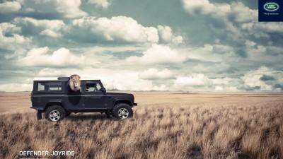 Land Rover Defender - Lion