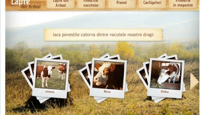 Aplicatie de Facebook: Napolact – Lapte din Ardeal (povestile vacutelor)