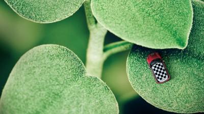 MINI - Ladybug
