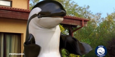 Testimoniale de la balena in campania Alfredo Foods semnata de Propaganda