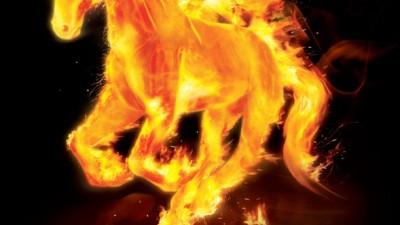 Alter - Fire horse
