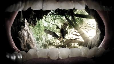Parodontax - Bats