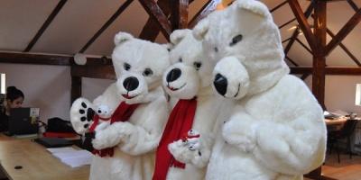 Ursii polari Coca-Cola viziteaza redactiile intr-o activare de presa marca McCann PR