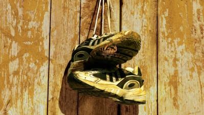 The Terry Fox Run - Sneakers, 1